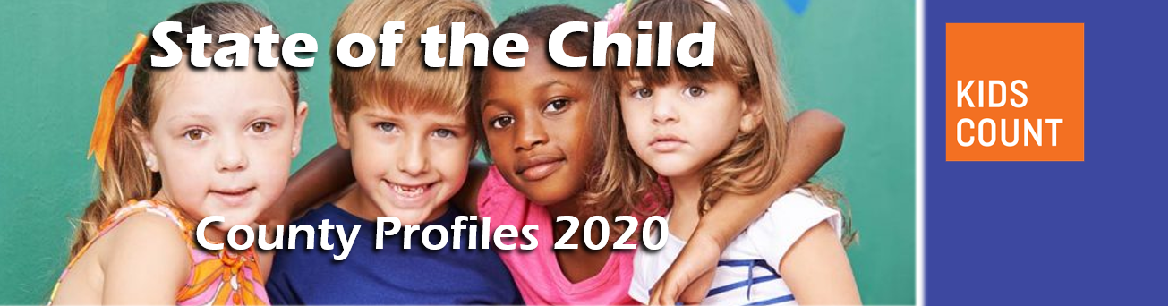 State of the Child County Profiles